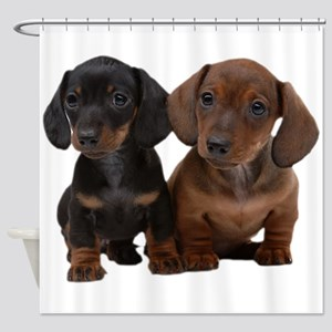 Dachshunds Shower Curtain